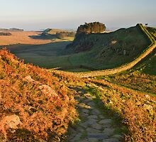 An Autumnal day on Hadrian's Wall by Joan Thirlaway