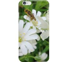 'Insect Inspection' iPhone Case/Skin