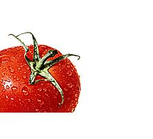 Elections or a fresh tomato salad... Photographic Print