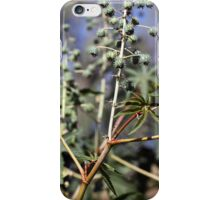 Fruits and leaves of the Castor oil plant (Ricinus). iPhone Case/Skin