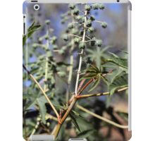 Fruits and leaves of the Castor oil plant (Ricinus). iPad Case/Skin