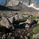 Alpine Stream by Christopher Barker