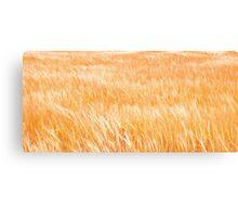 Breeze on Grain Canvas Print