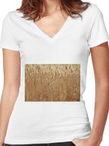 Details of a barley field with single spikes. Women's Fitted V-Neck T-Shirt
