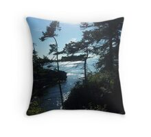 Sunset in Washington Throw Pillow