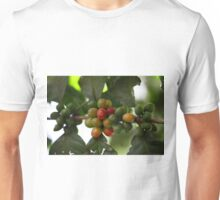 Green Coffee Beans Unisex T-Shirt