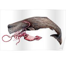 Sperm whale and squid battle Poster
