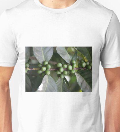 Green Coffee Beans Unisex T-Shirt