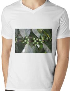 Green Coffee Beans Mens V-Neck T-Shirt