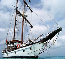 Tall Ship Sailing by Becqi Sherman