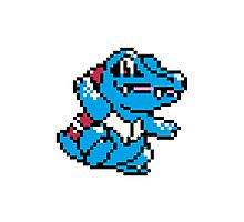 Pokemon - Totodile Sprite Photographic Print