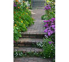 Brick Walk and Purple Flowers Photographic Print