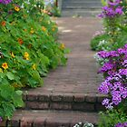 Brick Walk and Purple Flowers by Melodee Scofield