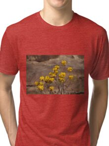 Blossoms of an Aloe Tri-blend T-Shirt