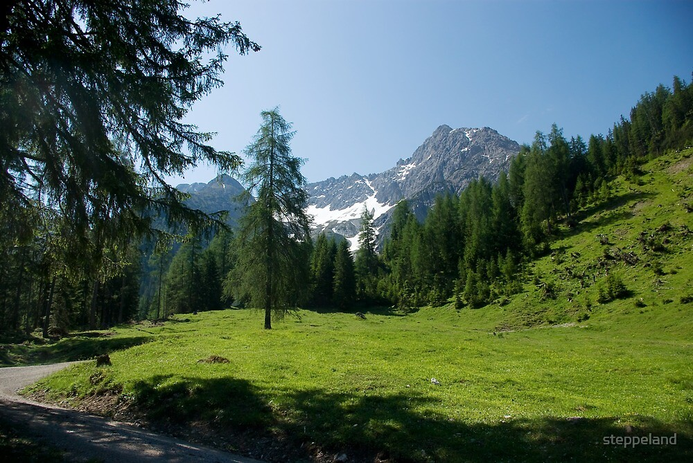 Hike to Griesbachalm by steppeland