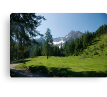 Hike to Griesbachalm Canvas Print