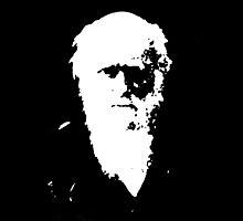 Darwin - Black by Matt Aunger
