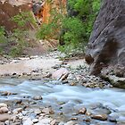 Zion Narrows by ruth  jolly