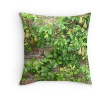 Espaliered Conference Pears Throw Pillow