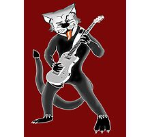 COOL CAT T-SHIRT Photographic Print