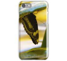 Butterflies II iPhone Case/Skin