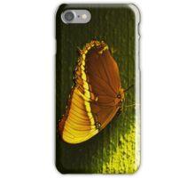 Butterflies III  iPhone Case/Skin