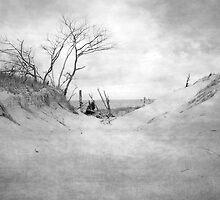 Empty Beach by Leo Hohmann