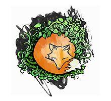 Red Fox by M McKeithen