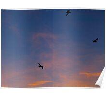 Circling the heavens Poster