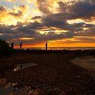 Shadowland  Waters by tigerwings