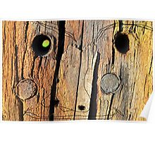 Wood Head Fence Wood Brown Pasture Face Poster