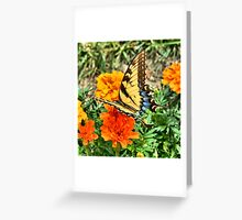 Monarch Butterfly Insect Yellow Wings Greeting Card