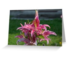 Flower Garden Blossoms Red Greeting Card