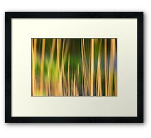 Wallpaper Desktop Background Nature Grass Pc Framed Print