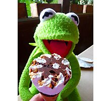 Frog Kermit Eat Ice Hunger Photographic Print