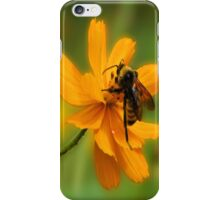 Bumble Bee Busy iPhone Case/Skin