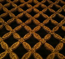Gold grate by Julie Van Tosh Photography