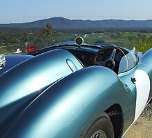 Aston Martin DB2/3 by Mark Buchanan