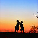 Sunset Serenade Pair of Kangaroos Australian Icon by Kym Bradley
