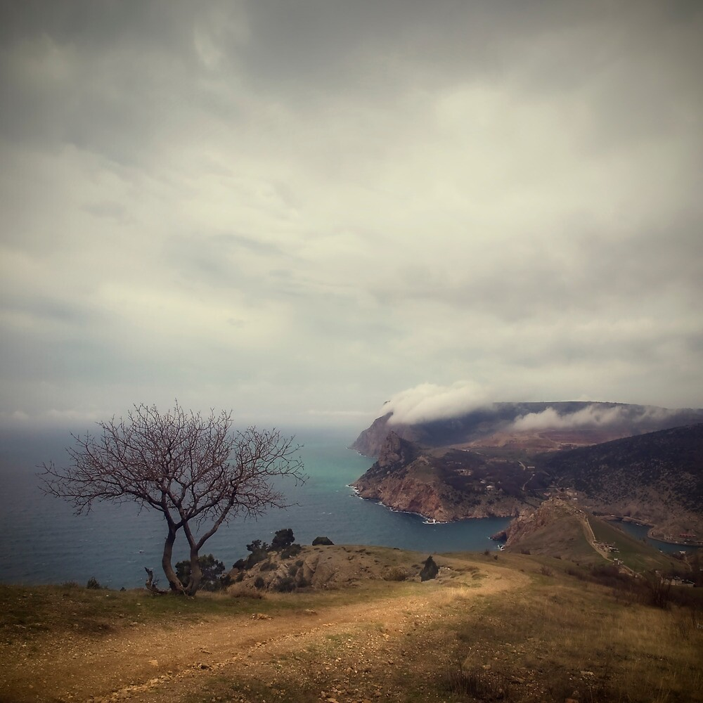 One by yurybird