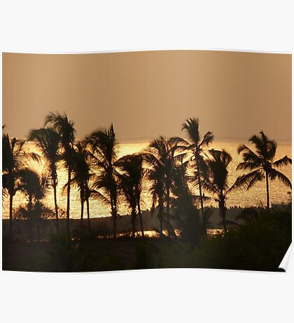 Sunset Palm Trees Sea Atmosphere Poster