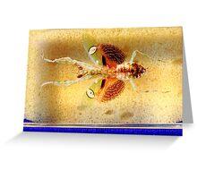 Mantis bug  Greeting Card