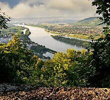 View from Leopoldsberg by Beatrix M Varga