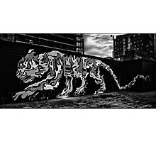 Glasgow Tiger Photographic Print