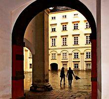 Schweizer Tor by BMV1