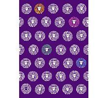 Yarn Ball Sheep Photographic Print