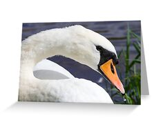 Mother Tucker Greeting Card