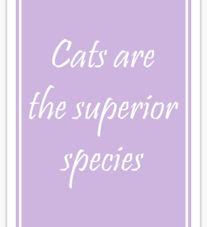 Cats Are the Superior Species Sticker