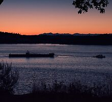 Tug Boat On The Puget Sound by Jason Butts