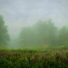 Six Mile Creek 3 by JKKimball